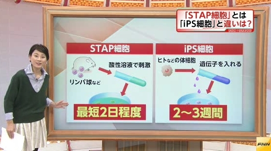 STAP細胞の懐疑点 PART535YouTube動画>1本 ->画像>44枚